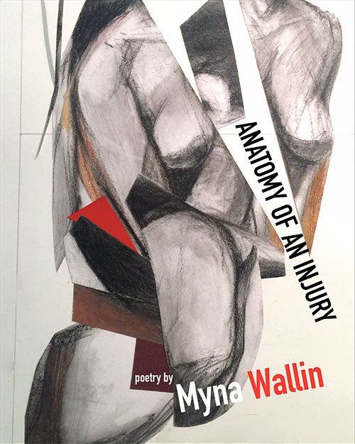 Cover of Anatomy of an Injury